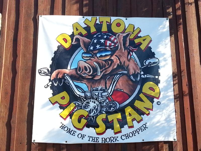 DaytonaPigStand1